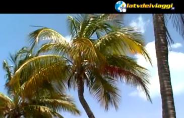 La_TV_Dei_Viaggi_Programmi_TV_stasera_in_Viblix_TV_online_in_streaming_video_gratis_senza_registrazione