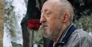 film_streaming_stasera_chi_salvera_le_rose_in_tv_ivid_online_viblix_tvweb_italiane_gratis_video