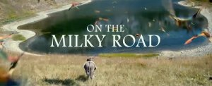 film on_the_milky_road_film_emir_kusturica_film_trailer_streaming_online_tv_gratis_italia_monica_belucci_guarda_movie_trailer_video