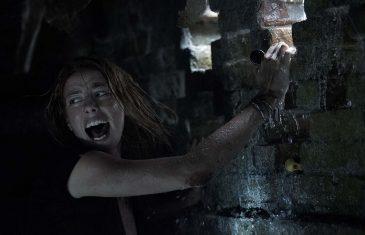 horror al cinema film crawl